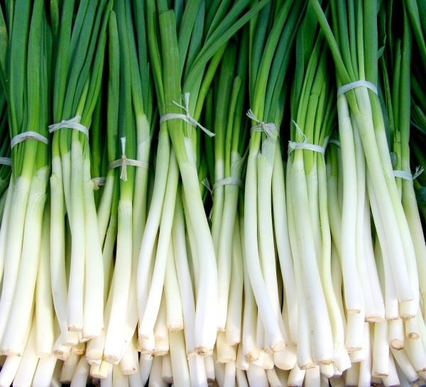 green onion, spring onions, vegetables