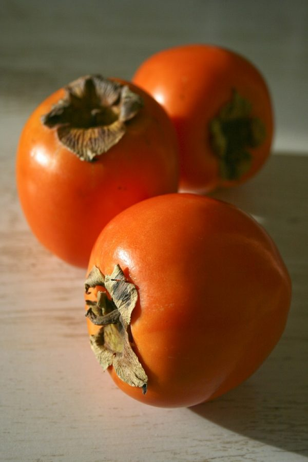 persimmon, fruit, tropical