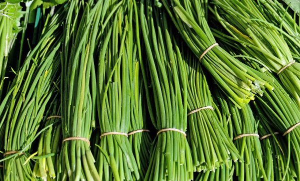 chives, herbs, culinary herbs